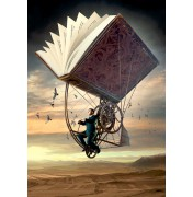 Fly with literature