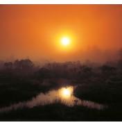 Klaus Ender: Abend im Moor. Komplettes Motiv.