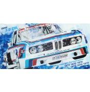 BMW 3.0 CSL E9 Racer - Winning Car