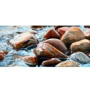 Johannes Wessmark: Wet Rocks II.