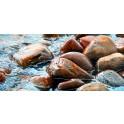 Nasse Felsen II – Wet Rocks II