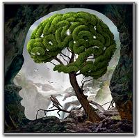 Freedom of mind - Die Gedanken sind frei