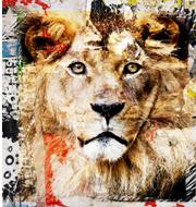 Tiere kunst kaufen