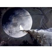 """Robert Dowling: """"Howling Wolf"""", komplettes Motiv"""
