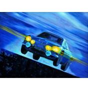 Die fliegende Flunder - Alpine A110 Rallye Monte Carlo 1973