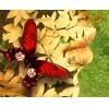 "Igor Morski: ""Butterflies"", Detail"