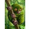 """Igor Morski: """"Rain Forest 1: Koboldmaki"""", komplettes Motiv"""
