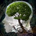 Freedom of mind – Die Gedanken sind frei